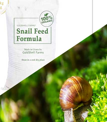 Enhanced Snail feed