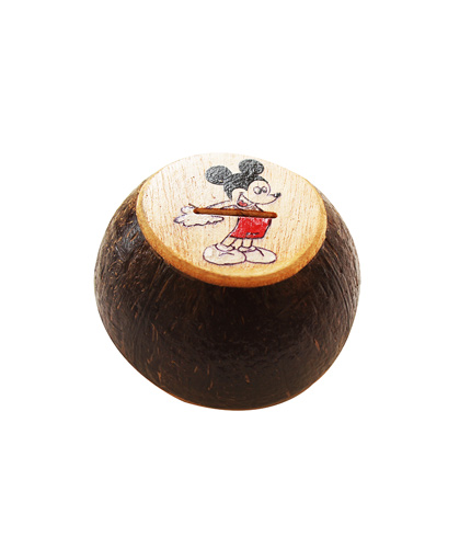 durable coconut shell money box/bank