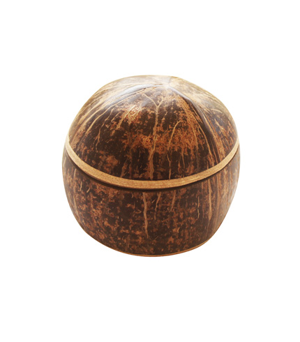 durable multipurpose coconut shell container