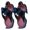 Ahenema - Penguin Design