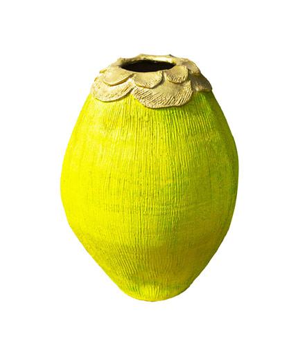 Coconut Flowerpot