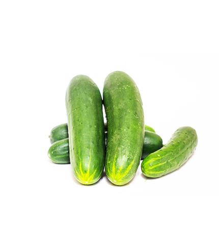 Organic and Crunchy Cucumber