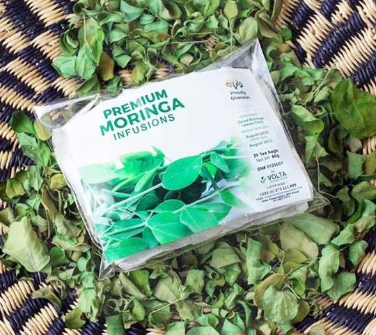 moringa infusion tea